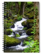 Smokey Mountain Stream Spiral Notebook
