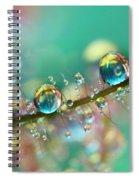 Smokey Rainbow Drops Spiral Notebook