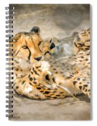 Smokin Cheetah Love Spiral Notebook