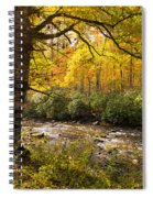 Smoky Autumn Spiral Notebook