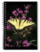 Smoky Mountain Butterfly Spiral Notebook