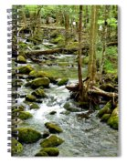 Smoky Mountain Stream 1 Spiral Notebook