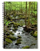 Smoky Mountain Stream 2 Spiral Notebook
