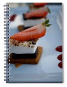 Smore Please Spiral Notebook