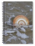 Snail In The Surf Spiral Notebook