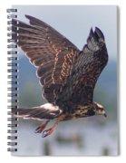 Snail Kite Spiral Notebook