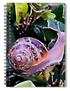 Snail On A Bush Version 2 Spiral Notebook