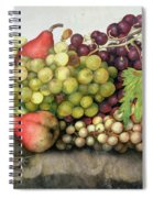 Snail With Grapes And Pears Spiral Notebook