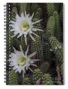Snake Cactus Flowers Spiral Notebook