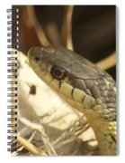 Snake Eye Spiral Notebook