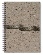 Snake On The Road Spiral Notebook