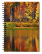 Snake River Fall Colors Spiral Notebook