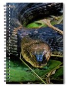 Snakehead Spiral Notebook
