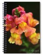 Snapdragon Flowers Spiral Notebook