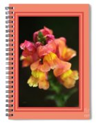 Snapdragon Flowers With Design Spiral Notebook