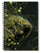 Snapping Turtle Head Spiral Notebook