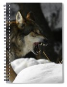 Snarling Wolf Spiral Notebook
