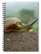 Sneal Spiral Notebook