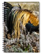 Sneeking Rooster Spiral Notebook