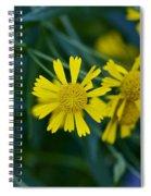 Sneezeweed Spiral Notebook