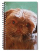 Snicker Doodle 852 -  Painting Spiral Notebook