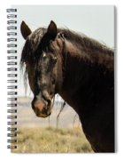 Snip Of Sand Wash Basin Spiral Notebook