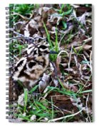 Snipe In Camouflage 2 Spiral Notebook