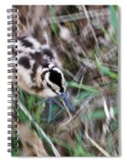 Snipe On The Run Spiral Notebook