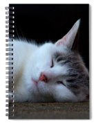Snooze Spiral Notebook