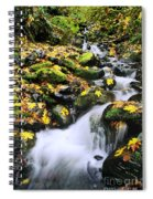 Snoqualmie National Fores Spiral Notebook