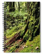 Snoqualmie National Forest Spiral Notebook
