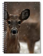 Snow Again 2 Spiral Notebook