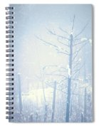 Snow And Remnants Of The Fire 2 Spiral Notebook