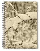 Snow Arch Spiral Notebook