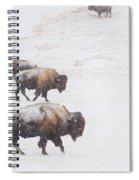 Snow Bound Spiral Notebook