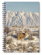 Snow-buck In Wyoming Spiral Notebook
