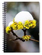 Snow Capped Flower Spiral Notebook