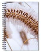 Snow Capped Foxtail Spiral Notebook