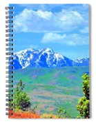 Snow Capped Spiral Notebook