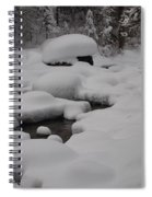 Snow Capret Spiral Notebook