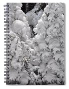Snow Coat Spiral Notebook