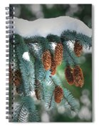 Snow Cones Spiral Notebook