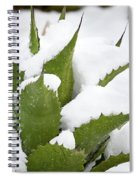 Snow Covered Agave Spiral Notebook