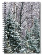 Snow-covered Forest, Wisconsin, Usa Spiral Notebook