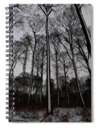Snow Covered Trees Spiral Notebook