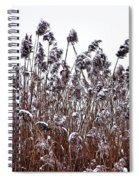 Snow Covered Wild Grass Spiral Notebook