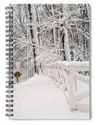 Snow Curve Spiral Notebook