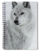 Snow Dog Spiral Notebook