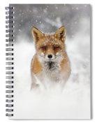 Snow Fox Series - Red Fox In A Blizzard Spiral Notebook
