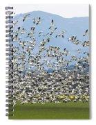 Snow Geese Exodus Spiral Notebook